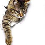 Vinilos decorativos de gatos